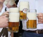 kippenburg-festprost